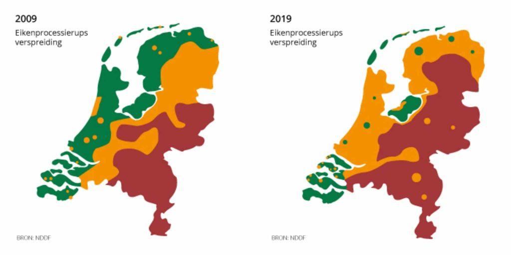 Verspreiding eikenprocessierups 2009-2019